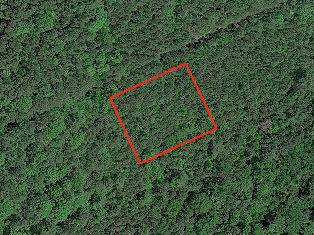 Amazing Double Lot in the South Carolina Countryside - Image 2