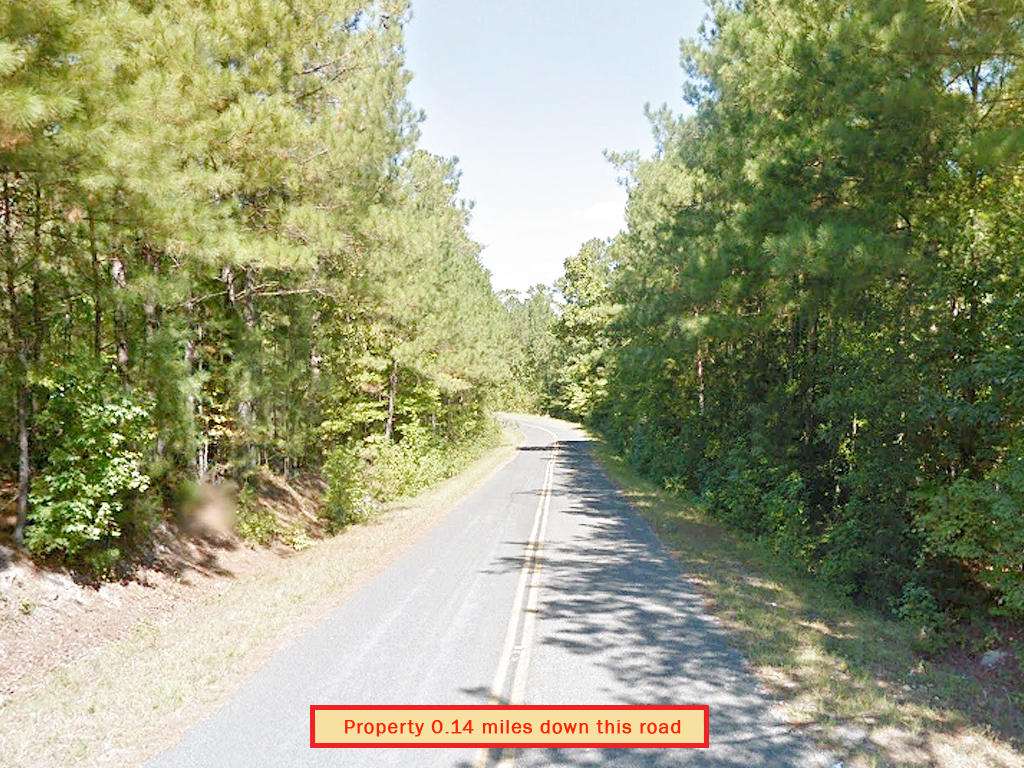 Amazing Double Lot in the South Carolina Countryside - Image 5