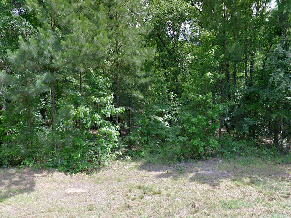 Gorgeous 1 Acre Lot with a Gentle Creek - Image 3