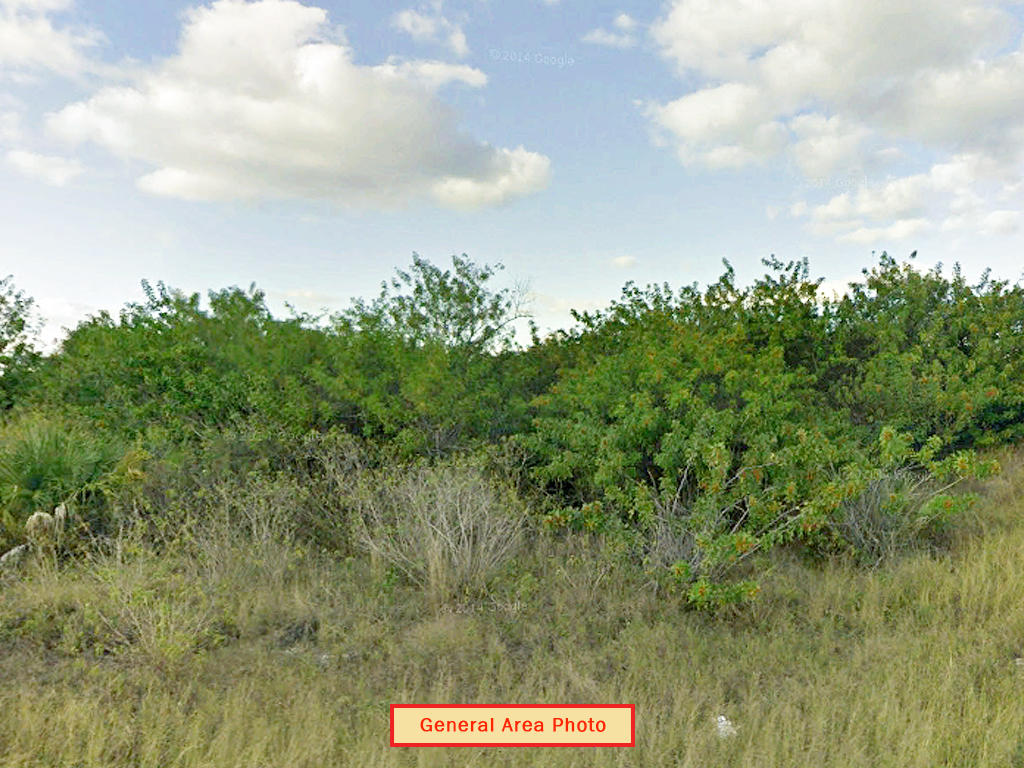 Beautiful 1 Acre Lot in Sunshine State - Image 3