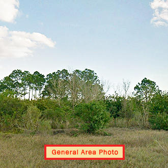 Beautiful 1 Acre Lot in Sunshine State - Image 0