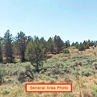 2 1/2 Acre Escape Near Mt. Shasta's Outdoor Adventures - Image 1