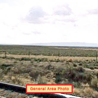 40 Acre Nevada Tract With Dirt Road Access - Image 1