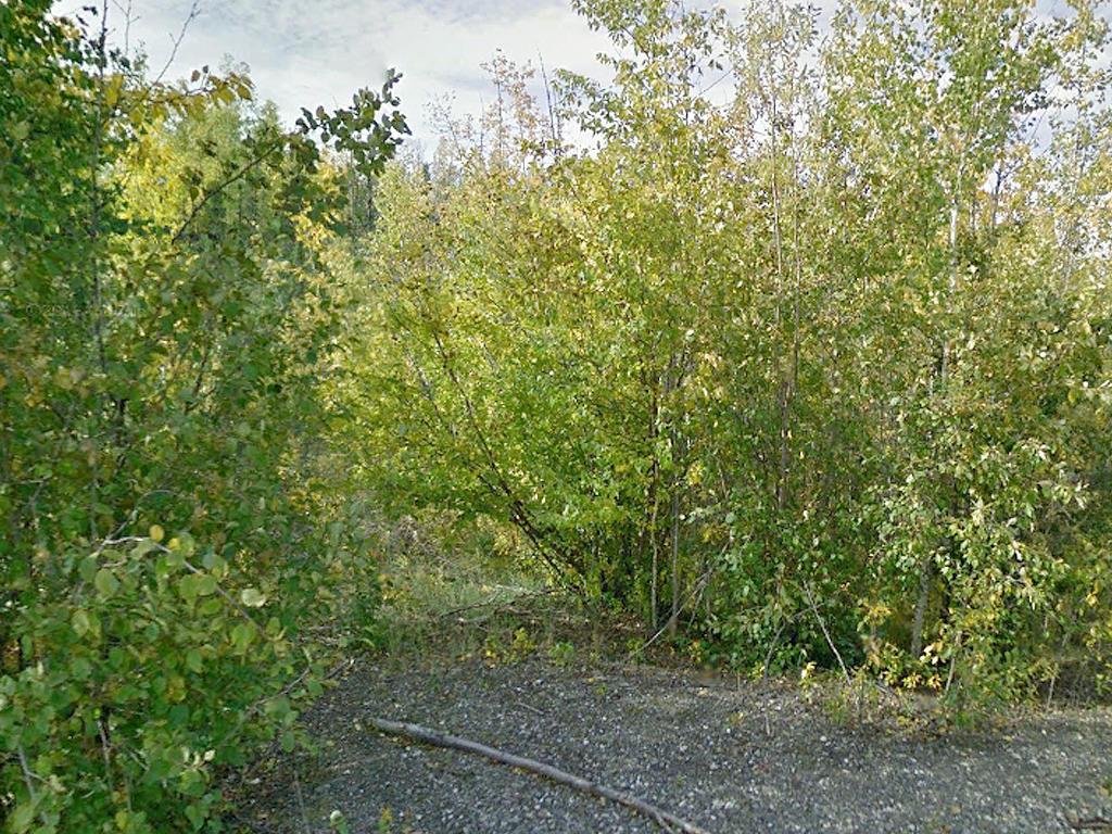 Rare Alaska Acreage With Road Access - Image 4