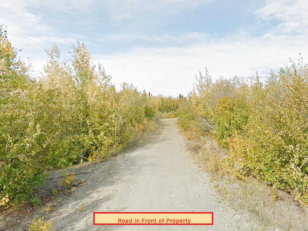 Rare Alaska Acreage With Road Access - Image 5