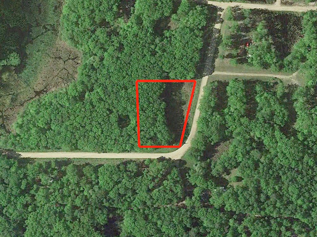 One Acre Property Near Lake Camile - Image 2