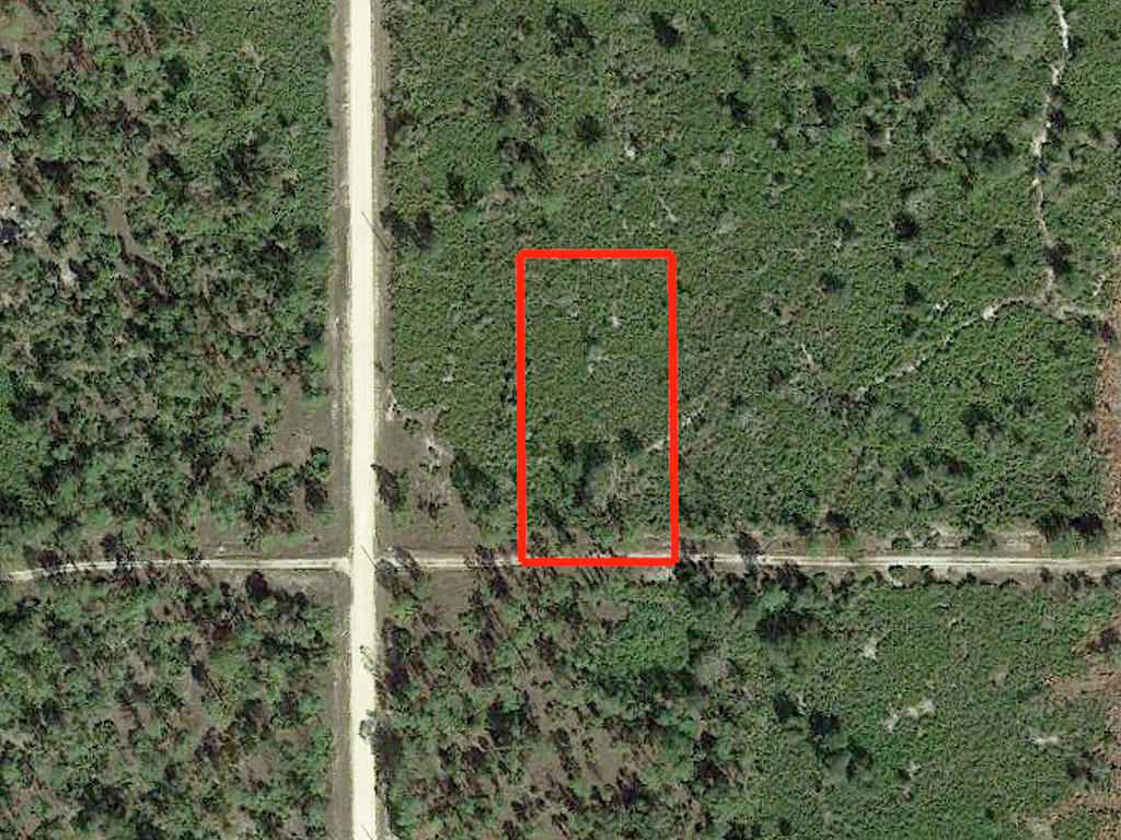Prime Acreage in South Florida - Image 2
