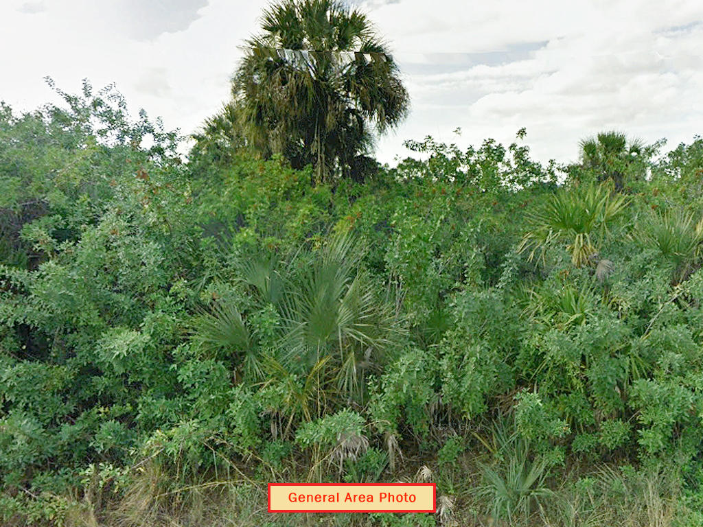 Prime Acreage in South Florida - Image 4