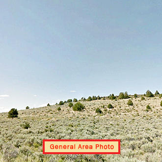 Stunning Oregon Acreage in Prime Location - Image 1