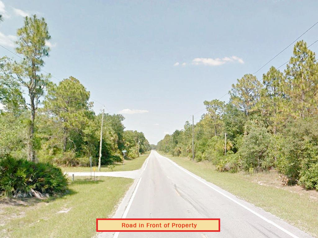 Beautiful Half Acre Near Florida Coast - Image 4