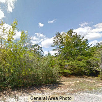 Rural Tree Covered Property in Crestview Florida - Image 0