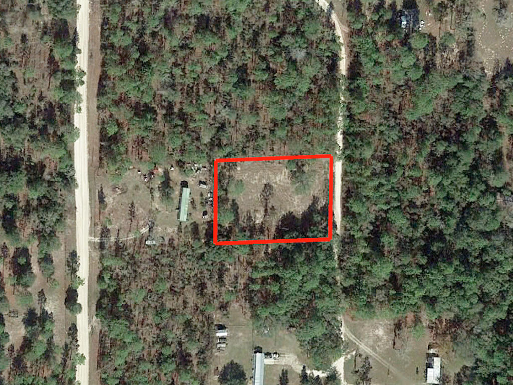 Almost An Acre of Land in Small Florida Community - Image 1