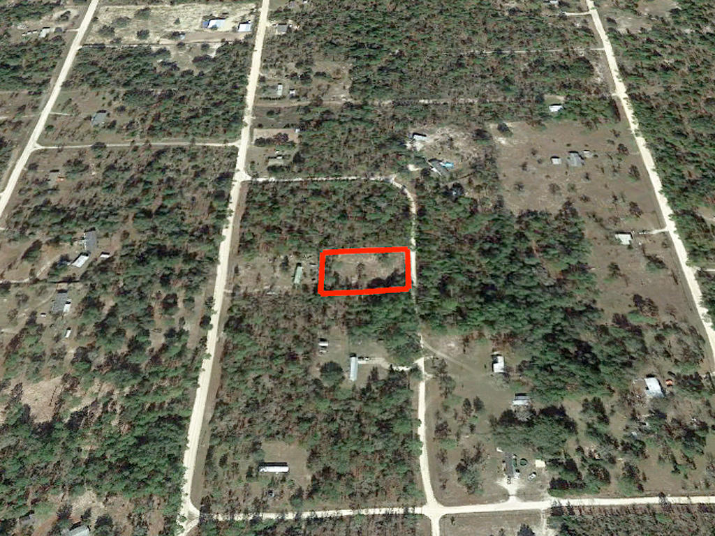 Almost An Acre of Land in Small Florida Community - Image 2
