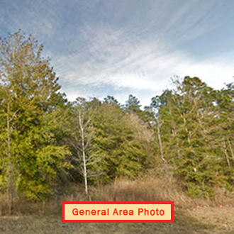 Almost An Acre of Land in Small Florida Community - Image 0