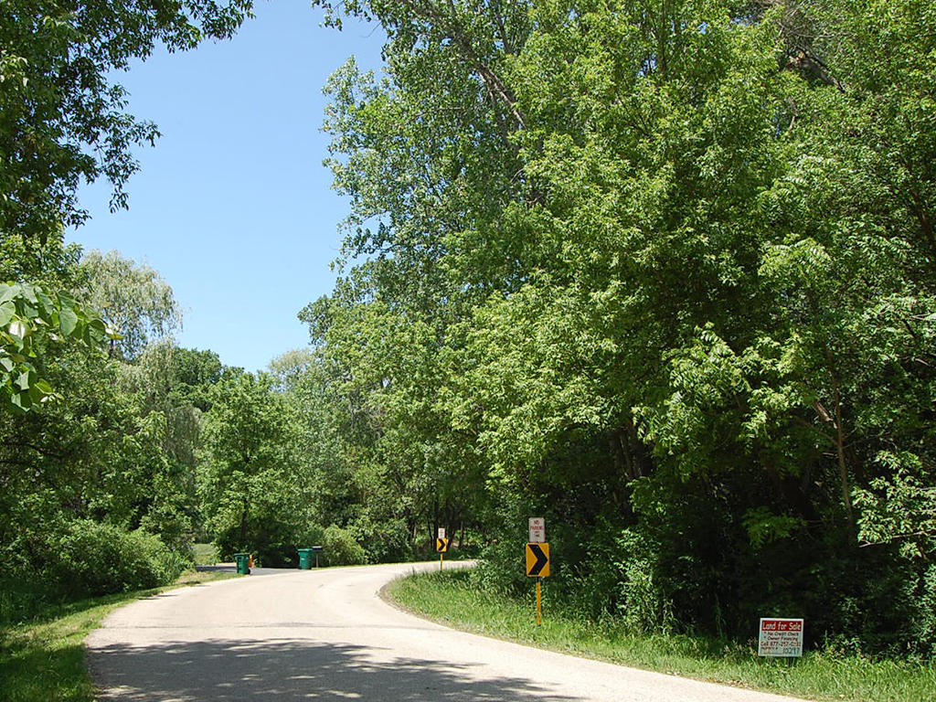 Quarter Acre Lot in Rural Illinois 90 Minutes from Chicago - Image 4