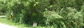 Quarter Acre Lot in Rural Illinois 90 Minutes from Chicago