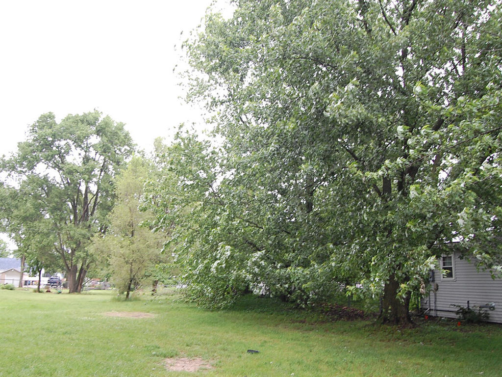 Picturesque Lot in Winamac - Image 4