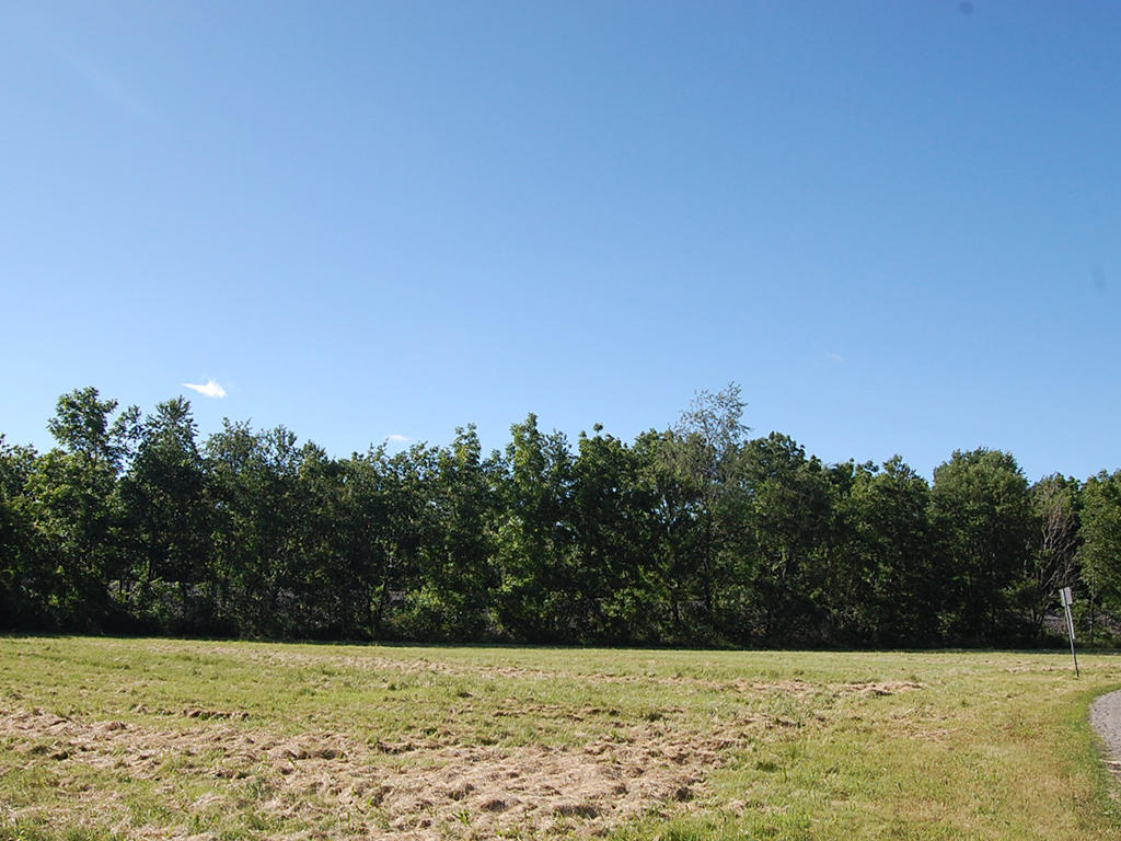 Safe Haven on Nearly Half an Acre - Image 3