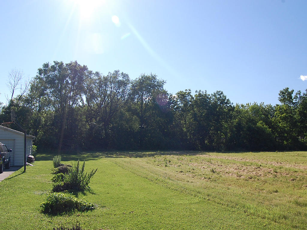 Safe Haven on Nearly Half an Acre - Image 4