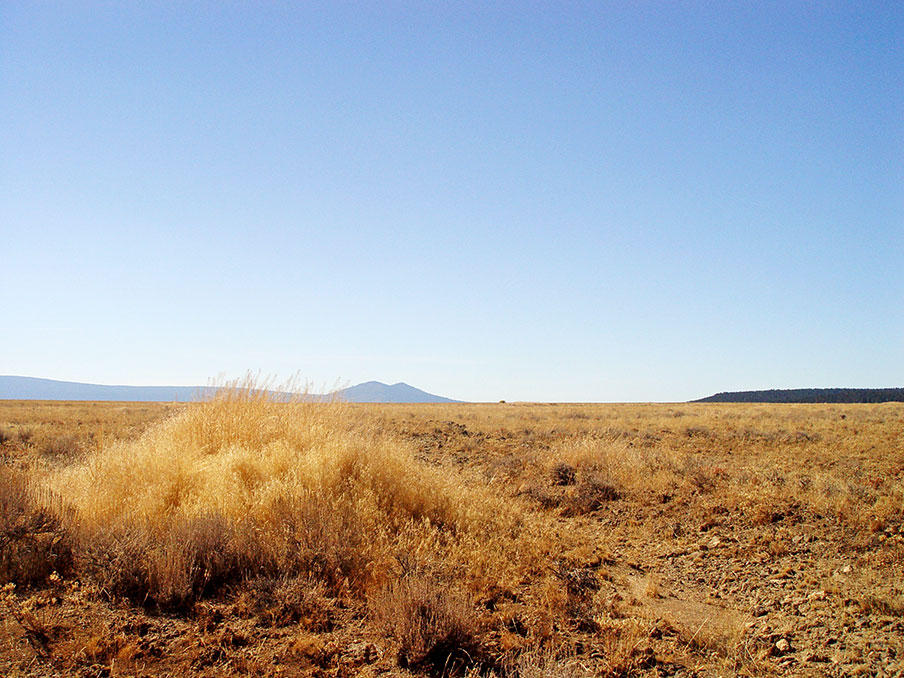 Remote 20 Acres in Southern Oregon with Access 1/3 of a mile away - Image 1