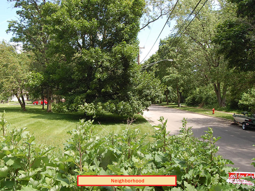 Enticing Illinois lot in City limits - Image 4