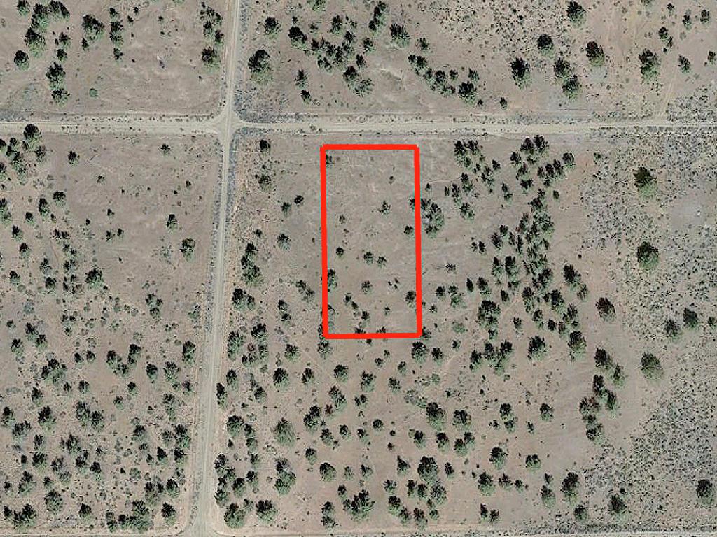 1.05 Acre Parcel About 5 Miles SW of Alturas - Image 2
