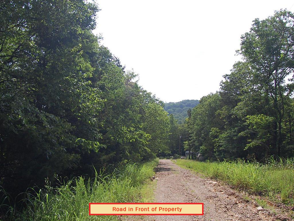 Country Gem Near Lake Toneycomo - Image 4