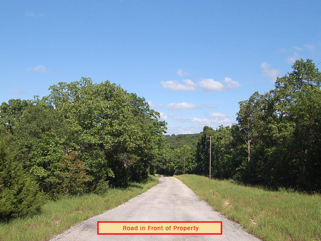 Spacious 2+ Acres of Private Land in Gated Community - Image 5