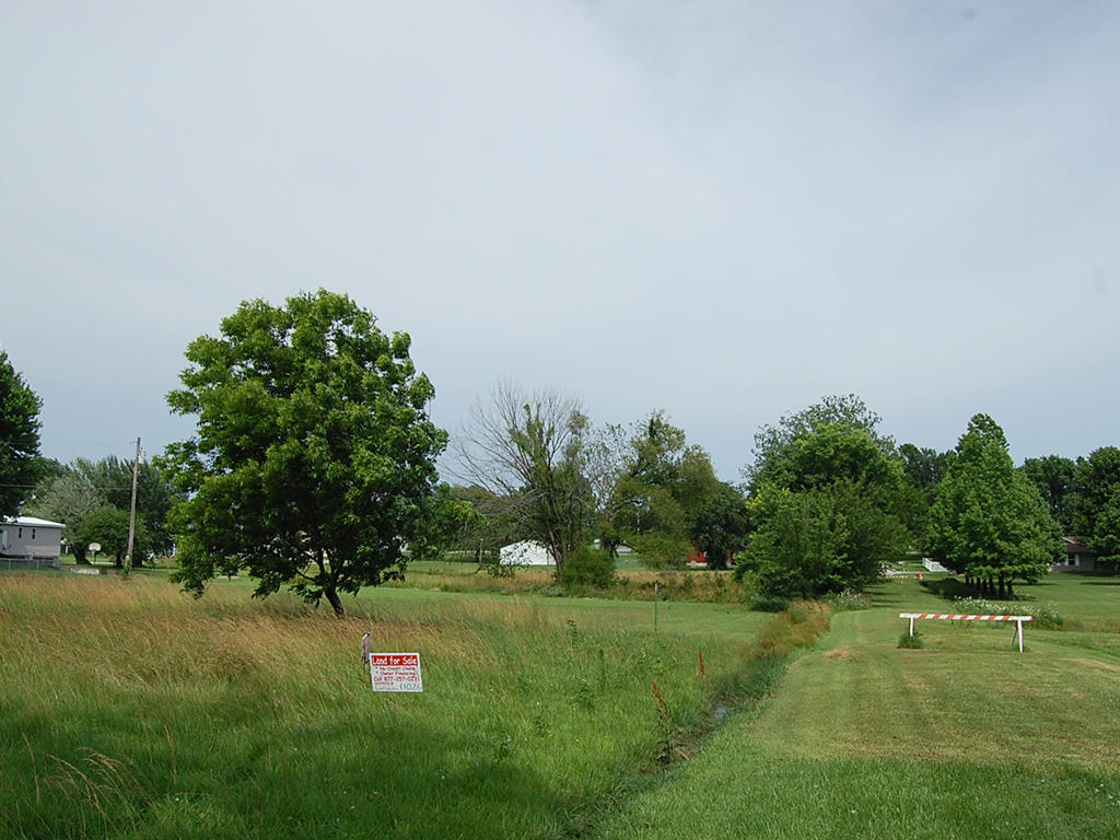 More than Quarter Acre of Southwest Missouri Land - Image 4