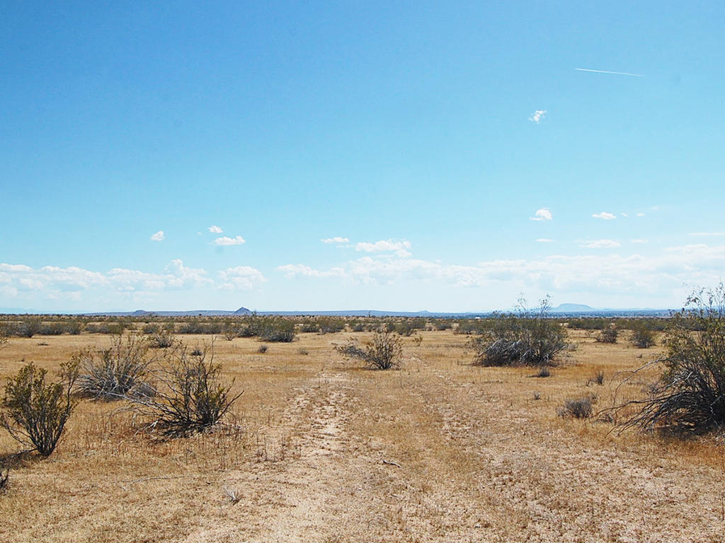 Peaceful 4 Acre Hideout 15 Minutes from California City - Image 3