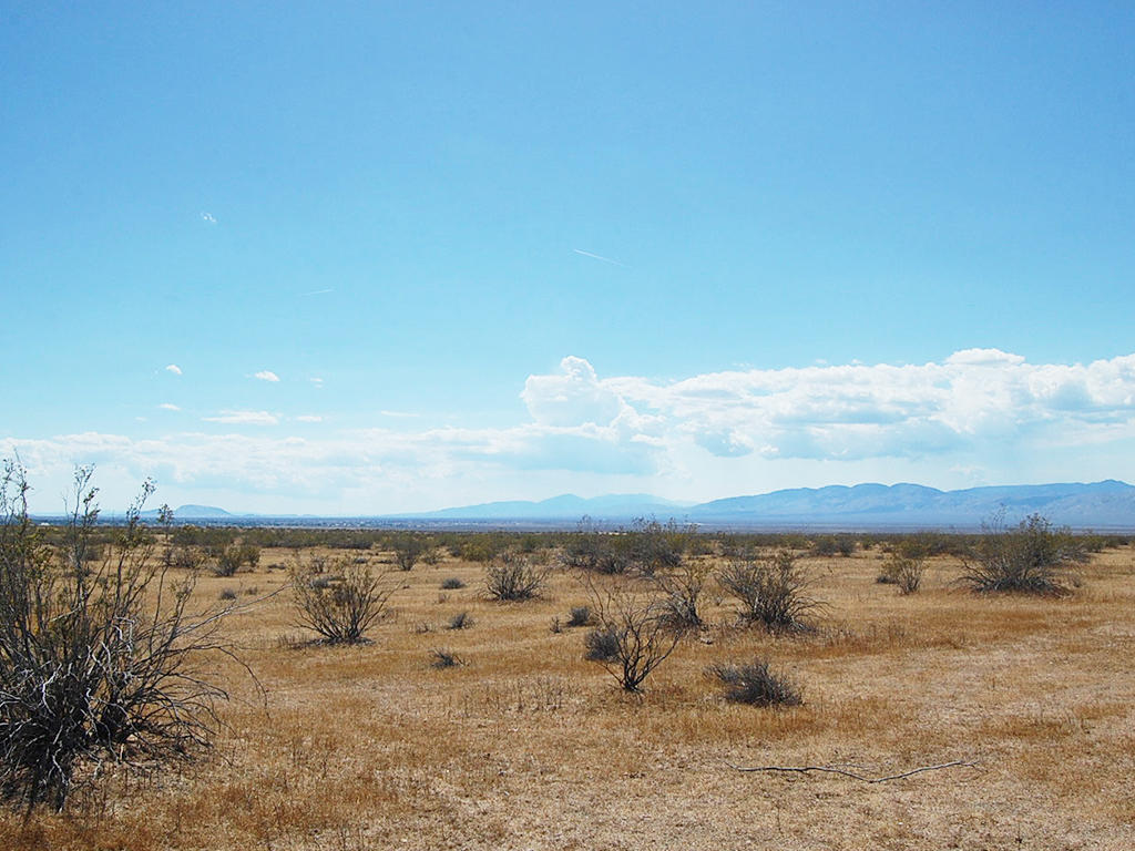 Peaceful 4 Acre Hideout 15 Minutes from California City - Image 4