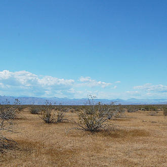 Peaceful 4 Acre Hideout 15 Minutes from California City - Image 0