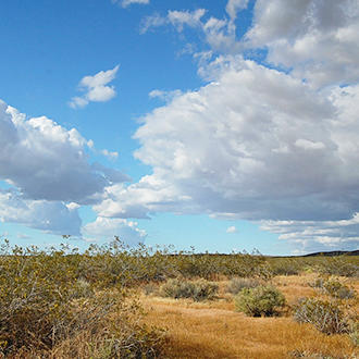 9+ Acres of Land About Half an Hour from California City - Image 1