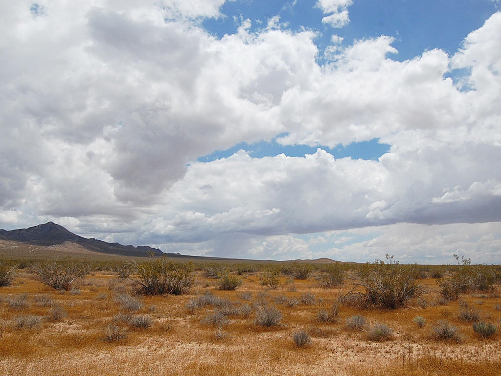 20 Acre California Hideaway between Barstow and California City - Image 5