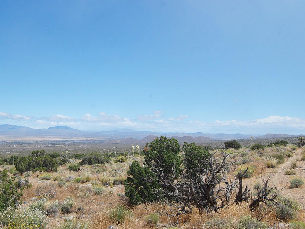 Five Acre Escape About 15 Minutes South of Lucerne Valley - Image 5