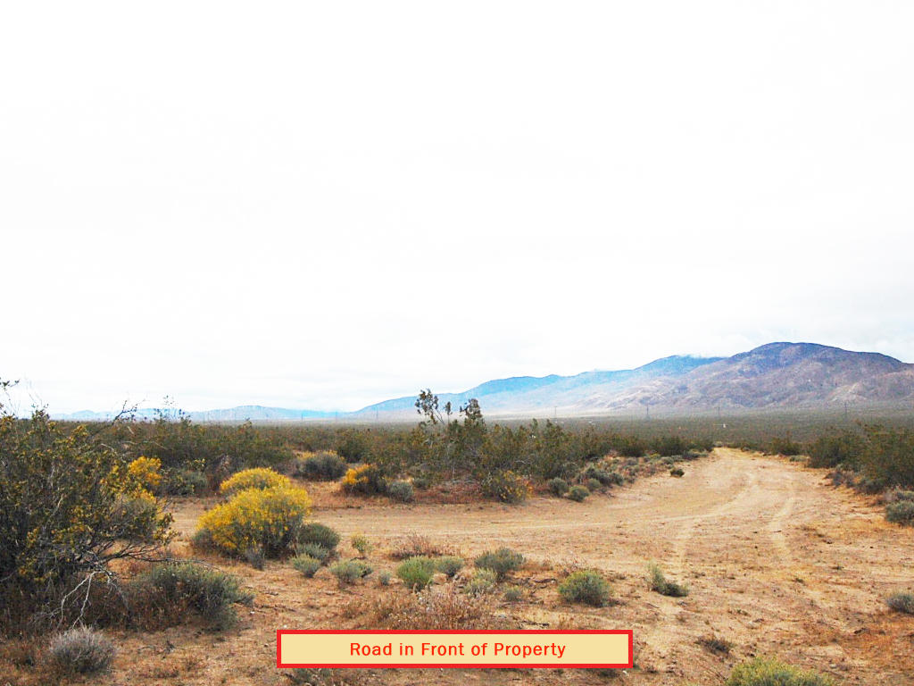 2.5 Acre Off-the-Grid Hideaway 15 Minutes from California City - Image 4