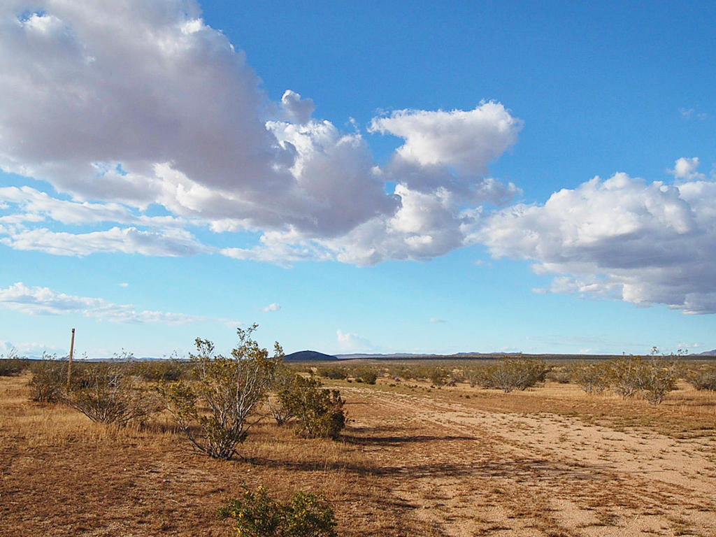 Quarter acre Haven near Red Rock Canyon State Park - Image 4
