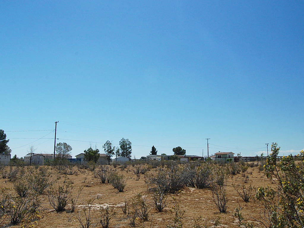Paved Road Access to this Half Acre California Lot - Image 3