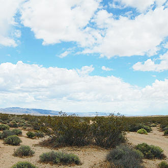 Very Remote 40 Acre Lot in San Bernardino California - Image 0