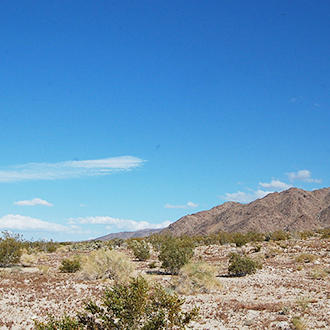 Investment Opportunity for 10 Lots Sold Together Outside Joshua Tree - Image 0