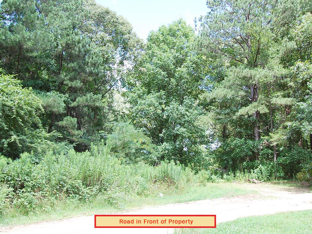 Beautiful 1 Acre Parcel in Quiet Neighborhood - Image 4