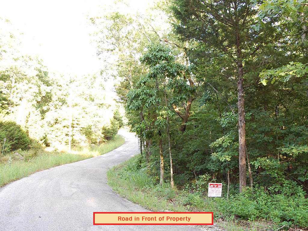Private Half Acre a Mile From Lake Thunderbird - Image 5