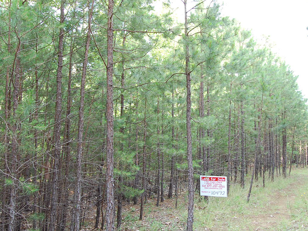 Residential Lot North of Greers Ferry Lake - Image 3