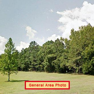One Acre Property near Florahome - Image 0