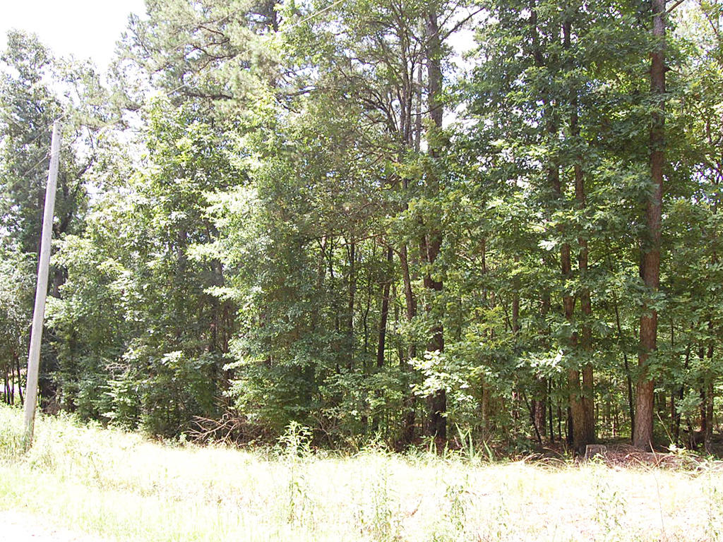 Double Lot Near Hot Springs Resort - Image 4