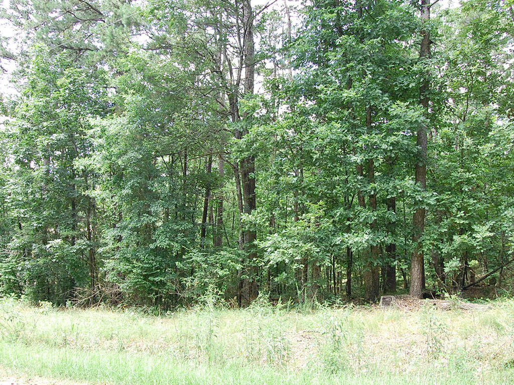Double Lot Near Hot Springs Resort - Image 1