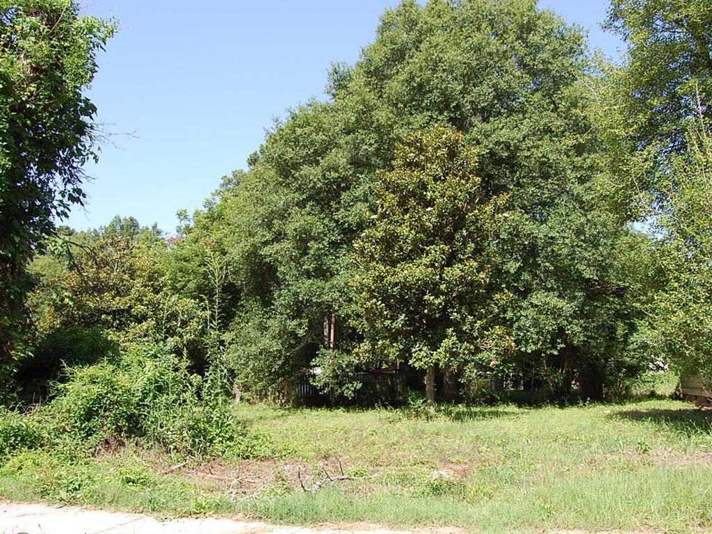 Dermott Arkansas Home Property - Image 3