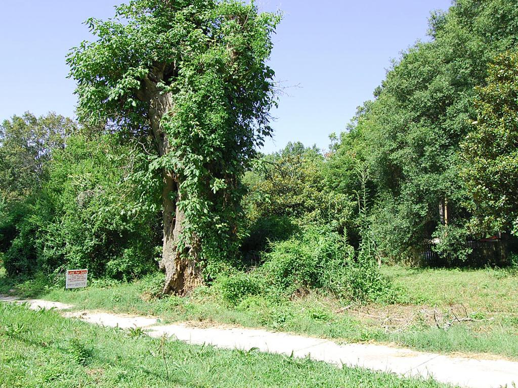 Dermott Arkansas Home Property - Image 0