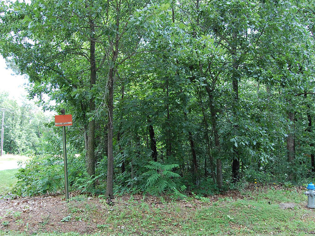 Scenic Arkansas Parcel in Recreational Community - Image 4