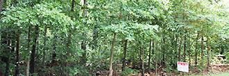 Scenic Arkansas Parcel in Recreational Community